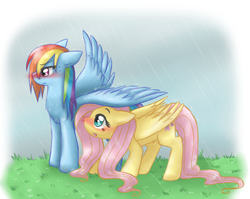Size: 1605x1276 | Tagged: safe, artist:mahoxyshoujo, fluttershy, rainbow dash, pegasus, pony, :o, artifact, blushing, covering, cute, dashabetes, female, floppy ears, flutterdash, grass, lesbian, mare, rain, repdigit milestone, shipping, shy, shyabetes, sidemouth, spread wings, tsunderainbow, tsundere, wavy mouth, wet, wet mane, wing umbrella, wings