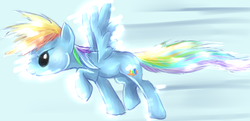 Size: 800x386 | Tagged: source needed, safe, artist:scenedo, rainbow dash, pegasus, pony, female, flying, get, index get, mare, solo, spread wings, wings