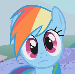 Size: 470x462 | Tagged: safe, screencap, rainbow dash, pegasus, pony, dragonshy, breaking the fourth wall, cropped, cute, dashabetes, female, frown, looking at you, mare, reaction image, solo, stare, wide eyes