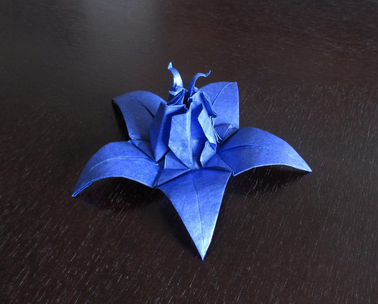 124333 Artistcahoonas Craft Flower Origami Papercraft Photo