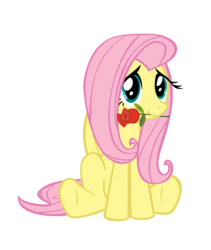 Size: 3000x3559   Tagged: safe, artist:sociox, fluttershy, pegasus, pony, female, mare, mouth hold, no more ponies at source, rose, simple background, sitting, solo, transparent background, vector