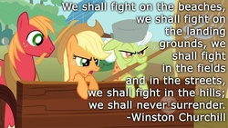 Size: 800x450 | Tagged: safe, artist:wisdomhoof, edit, edited screencap, screencap, applejack, big macintosh, granny smith, swarm of the century, fan, flyswatter, hub logo, mouth hold, pitchfork, quote, table, text