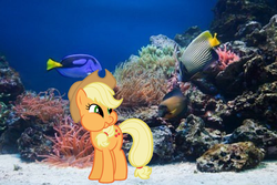 Size: 1200x801 | Tagged: applejack, fish, irl, photo, ponies in real life, pony, safe, underwater, vector
