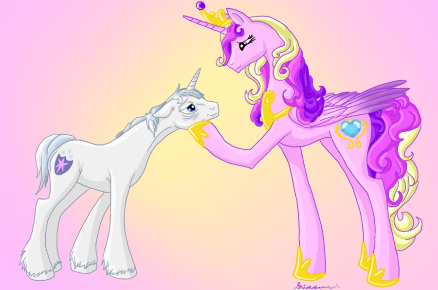 Male Mare Old Pony Princess Cadance Safe Shining Armor Stallion Unicorn