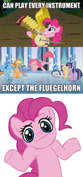Size: 500x1060 | Tagged: safe, edit, edited screencap, screencap, applejack, fluttershy, pinkie pie, rainbow dash, rarity, spike, twilight sparkle, swarm of the century, the crystal empire, :i, accordion, banjo, cymbals, flugelhorn, harmonica, image macro, looking at you, mane seven, mane six, musical instrument, parasprite polka, shrug, shrugpony, sousaphone, tuba