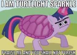 Size: 600x428 | Tagged: safe, artist:dethlunchies, artist:generalpolkovnik, edit, twilight sparkle, turtle, i am your god now bring me your virgins, not salmon, species swap, turtlight sparkle, wat