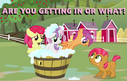 Size: 974x620 | Tagged: safe, apple bloom, babs seed, scootaloo, sweetie belle, one bad apple, barrel, bath, cutie mark crusaders, image macro, washing
