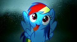 Size: 1920x1056 | Tagged: rain, rainbow dash, safe, tongue out, wallpaper