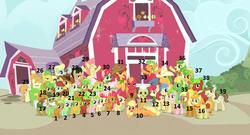 Size: 1362x735 | Tagged: safe, apple bloom, apple brown betty, apple bumpkin, apple cinnamon, apple cobbler, apple crumble, apple dazzle, apple dumpling, apple fritter, apple honey, apple leaves, apple mint, apple rose, apple split, apple squash, apple strudel, apple tarty, apple top, applejack, aunt orange, auntie applesauce, babs seed, big macintosh, braeburn, bushel, candy apples, crimson gala, florina tart, gala appleby, golden delicious, granny smith, half baked apple, hayseed turnip truck, hoss, jonagold, liberty belle, marmalade jalapeno popette, mosely orange, perfect pie, pink lady, red delicious, red gala, red june, sweet tooth, uncle orange, wensley, earth pony, pony, unicorn, apple family reunion, apple, apple family, apple family member, male, orange wafer, reference sheet, stallion, the oranges
