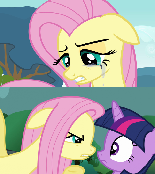191905 angry crying flutterrage fluttershy safe twilight