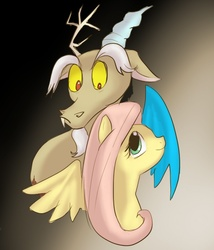 Size: 600x700 | Tagged: discord, discoshy, female, fluttershy, keep calm and flutter on, male, safe, shipping, straight