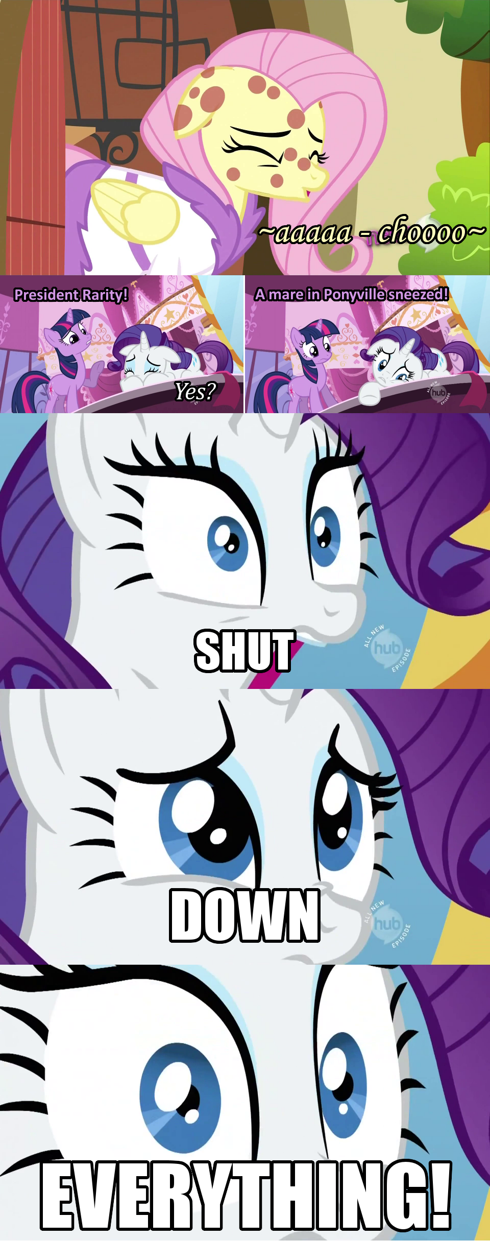 Displaying 18 gt images for rarity memes