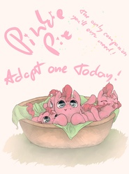 Size: 1920x2600 | Tagged: dead source, safe, artist:fruitbloodmilkshake, pinkie pie, earth pony, pony, adoption, basket, biting, bronybait, cute, diapinkes, female, filly, foal, multeity, pet, pony in a basket, solo, tail bite, text, too much pink energy is dangerous, younger