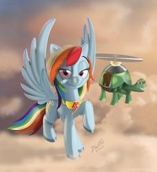 Size: 1921x2094   Tagged: safe, artist:tavogdl, rainbow dash, tank, pegasus, pony, cloud, duo, element of loyalty, female, mare, pet, raised hoof