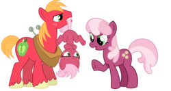 Size: 1500x800 | Tagged: artist:hasana-chan, big macintosh, cheerilee, cheerimac, crossed hooves, earth pony, family, female, filly, foal, hanging, hooves, male, mare, mouth hold, oc, oc:acey mac, offspring, parent:big macintosh, parent:cheerilee, parents:cheerimac, pony, safe, scolding, shipping, simple background, stallion, straight, tail, tail pull, transparent background, unshorn fetlocks, upside down