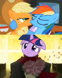 Size: 600x756 | Tagged: appledash, applejack, earth pony, edit, female, flower, kissing, korra, lesbian, mare, out of context, pegasus, pony, rainbow dash, safe, screencap, shipping, the legend of korra, the mysterious mare do well, twidash, twilight sparkle