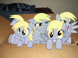 Size: 4000x3000 | Tagged: box, derpies, derpy hooves, female, irl, mare, multeity, pegasus, photo, ponies in real life, pony, pony in a box, safe, scrunchy face, unstoppable force of derp, vector