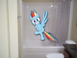 Size: 4000x3000   Tagged: safe, rainbow dash, pegasus, pony, bathtub, female, irl, mare, photo, ponies in real life, shower, solo, surprised, toilet, vector