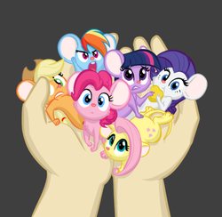 Size: 412x402 | Tagged: safe, artist:furseiseki, applejack, fluttershy, pinkie pie, rainbow dash, rarity, twilight sparkle, human, mouse, applemouse, cheese, cute, dashabetes, diapinkes, female, fluttermouse, food, hand, holding, in goliath's palm, jackabetes, mane six, mousified, my little pony, pinkie mouse, rainbow mouse, raribetes, rarimouse, shyabetes, size difference, species swap, twiabetes, twimouse, weapons-grade cute