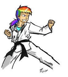 Size: 707x801   Tagged: safe, artist:netcyber, rainbow dash, human, black belt, clothes, female, fighting stance, gi, grin, humanized, karate, martial arts, my little asskicker, robe, simple background, smirk, solo, trousers, white background