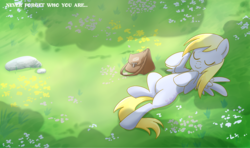 Size: 1500x885 | Tagged: safe, artist:madmax, derpy hooves, pegasus, pony, bag, cute, derpabetes, eyes closed, female, flower, grass, lying down, mail, mailbag, mare, on back, outdoors, sleeping, smiling, solo