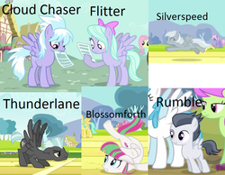 Size: 973x755 | Tagged: safe, edit, edited screencap, screencap, blossomforth, cloudchaser, dizzy twister, flitter, fluttershy, lightning bolt, merry may, orange swirl, parasol, rainbowshine, rumble, silverspeed, sunshower raindrops, thunderlane, white lightning, pegasus, pony, hurricane fluttershy, background pony, collage, colt, cropped, female, flexible, foal, male, mare, names, stallion