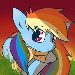 Size: 600x600 | Tagged: safe, artist:super-jess, rainbow dash, pegasus, pony, clothes, cute, female, mare, scarf, solo