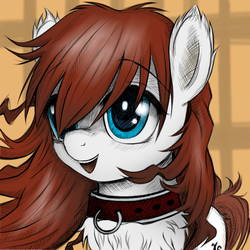 Size: 600x600 | Tagged: artist:kejifox, artist:rainbow, blue eyes, chest fluff, collar, colored, cute, digital art, ear fluff, fluffy, oc, oc:gammadelta, oc only, pet, pony pet, safe, solo, source needed, unshorn fetlocks