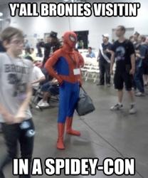 Size: 449x540 | Tagged: safe, human, bronycon, cosplay, image macro, irl, irl human, photo, spider-man