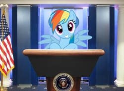 Size: 746x553 | Tagged: safe, artist:normanb88, rainbow dash, flag, irl, photo, podium, ponies in real life, president, united states, vector