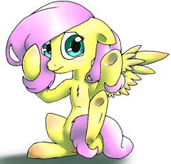 Size: 470x450 | Tagged: safe, artist:kiruki1999, fluttershy, pegasus, pony, female, floppy ears, looking at you, mare, simple background, sitting, solo, spread wings, strategically covered, tail censor, three quarter view, white background, wings
