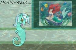 Size: 889x590 | Tagged: safe, lyra heartstrings, mermaid, sea pony, seahorse, ariel, disney princess, flounder, human lovers, meanwhile, seapony lyra, seashell, the little mermaid