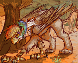 Size: 850x695 | Tagged: safe, artist:feathersandink, oc, oc only, oc:rainbow feather, griffon, everfree forest, interspecies offspring, magical lesbian spawn, offspring, parent:gilda, parent:rainbow dash, parents:gildash, solo