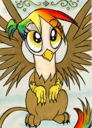 Size: 301x418 | Tagged: safe, artist:foxinshadow, oc, oc only, oc:rainbow feather, griffon, cute, interspecies offspring, magical lesbian spawn, offspring, parent:gilda, parent:rainbow dash, parents:gildash, solo