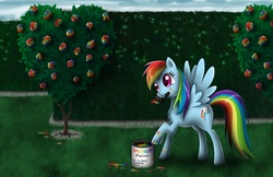 Size: 1670x1080 | Tagged: safe, artist:wdeleon, rainbow dash, alice in wonderland, crossover, flower, mouth hold, paint, paint on fur, paintbrush, solo