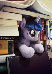 Size: 775x1089 | Tagged: safe, artist:buttercupbabyppg, twilight sparkle, book, book fort, cute, irl, photo, plushie, solo