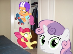 Size: 1200x900 | Tagged: apple bloom, cutie mark crusaders, irl, photo, ponies in real life, pony, safe, scootaloo, sweetie belle, vector