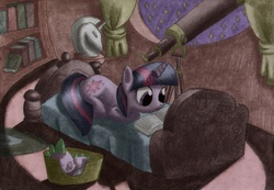 Size: 2331x1612 | Tagged: artist:wojtovix, bed, book, dragon, female, golden oaks library, male, mare, night, pony, reading, safe, sleeping, spike, stars, telescope, traditional art, twilight sparkle, unicorn