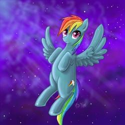 Size: 800x800 | Tagged: safe, artist:nefertie, rainbow dash, pegasus, pony, solo