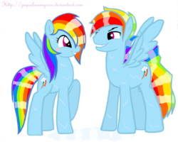 Size: 1468x1174 | Tagged: artist:jaquelindreamz, dashblitz, female, male, rainbow blitz, rainbow dash, rule 63, safe, selfcest, shipping, straight, wet mane