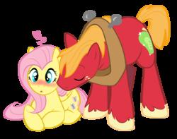 Size: 8381x6597 | Tagged: safe, artist:littletiger488, big macintosh, fluttershy, earth pony, pony, absurd resolution, blushing, fluttermac, male, nuzzling, shipping, stallion, straight