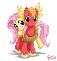 Size: 794x852 | Tagged: safe, artist:mysticalpha, big macintosh, fluttershy, earth pony, pony, fluttermac, male, shipping, stallion, straight