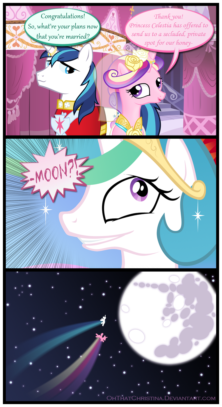 Viewing Gallery For - Shining Armor And Princess Cadence Honeymoon
