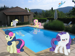 Size: 870x652 | Tagged: safe, artist:destructodash, bon bon, derpy hooves, fluttershy, rainbow dash, rarity, sweetie drops, pony, irl, photo, ponies in real life, reflection, swimming pool, vector