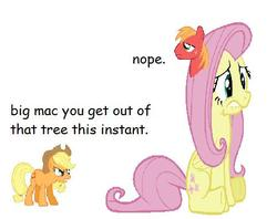 Size: 482x382 | Tagged: safe, applejack, big macintosh, fluttershy, earth pony, pony, male, stallion