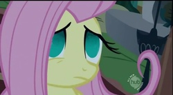 Size: 699x386 | Tagged: safe, fluttershy, dull eyes of unhappiness, empty eyes, no catchlights, no pupils