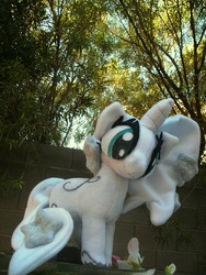 Size: 720x960 | Tagged: artist needed, safe, princess silver swirl, g2, g2 to g4, generation leap, irl, photo, plushie