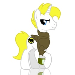 Size: 700x700 | Tagged: dead source, safe, artist:mylittlenickarette, oc, oc only, fallout equestria, solo