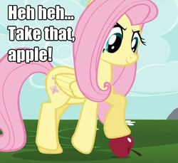 Size: 838x767 | Tagged: caption, fluttershy, image macro, safe