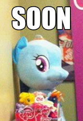 Size: 300x436 | Tagged: funrise, irl, photo, plushie, rainbow dash, safe, soon